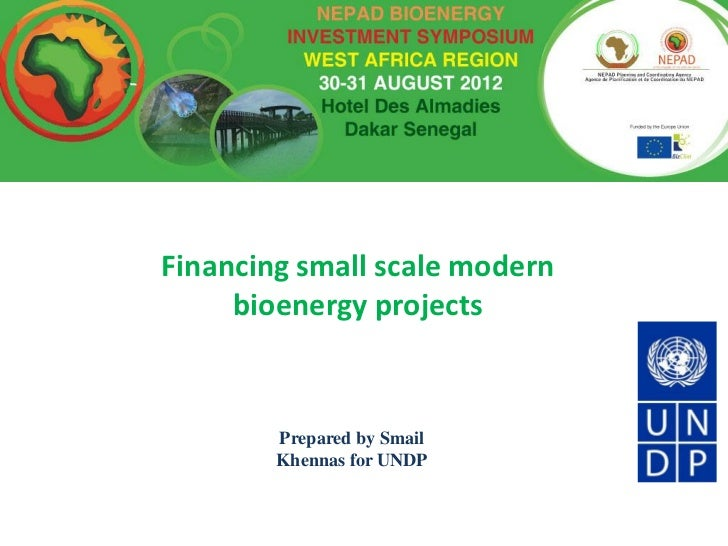Financing small scale modern     bioenergy projects        Prepared by Smail        Khennas for UNDP