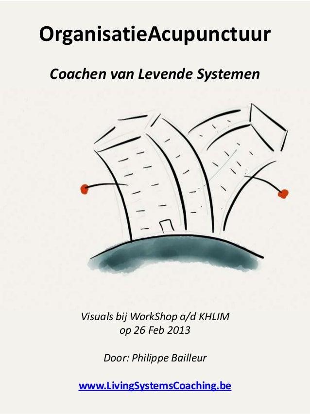 OrganisatieAcupunctuur Coachen van Levende Systemen     Visuals bij WorkShop a/d KHLIM              op 26 Feb 2013        ...