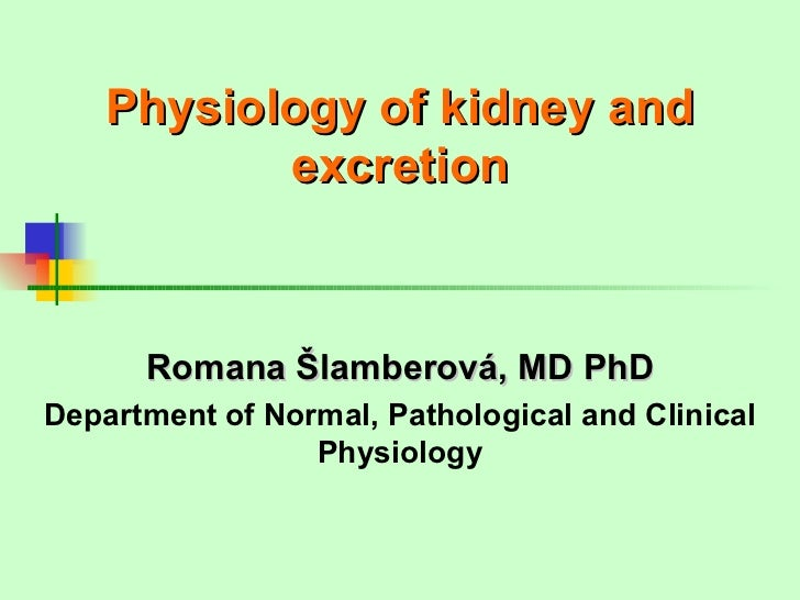 Physiology of kidney and           excretion      Romana Šlamberová, MD PhDDepartment of Normal, Pathological and Clinical...