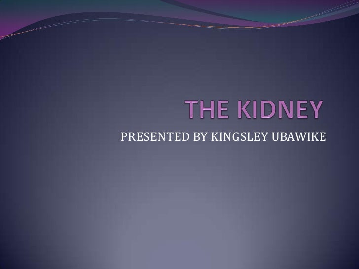 THE KIDNEY<br />PRESENTED BY KINGSLEY UBAWIKE<br />