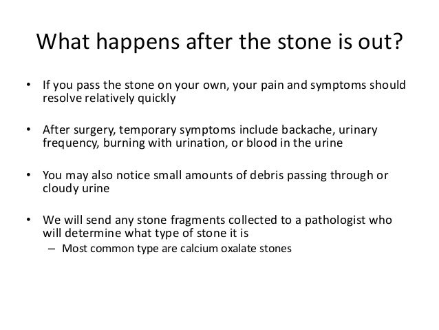 Everything You Ever Wanted To Know About Kidney Stones