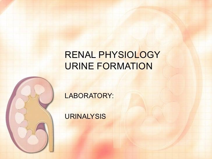 RENAL PHYSIOLOGYURINE FORMATIONLABORATORY:URINALYSIS