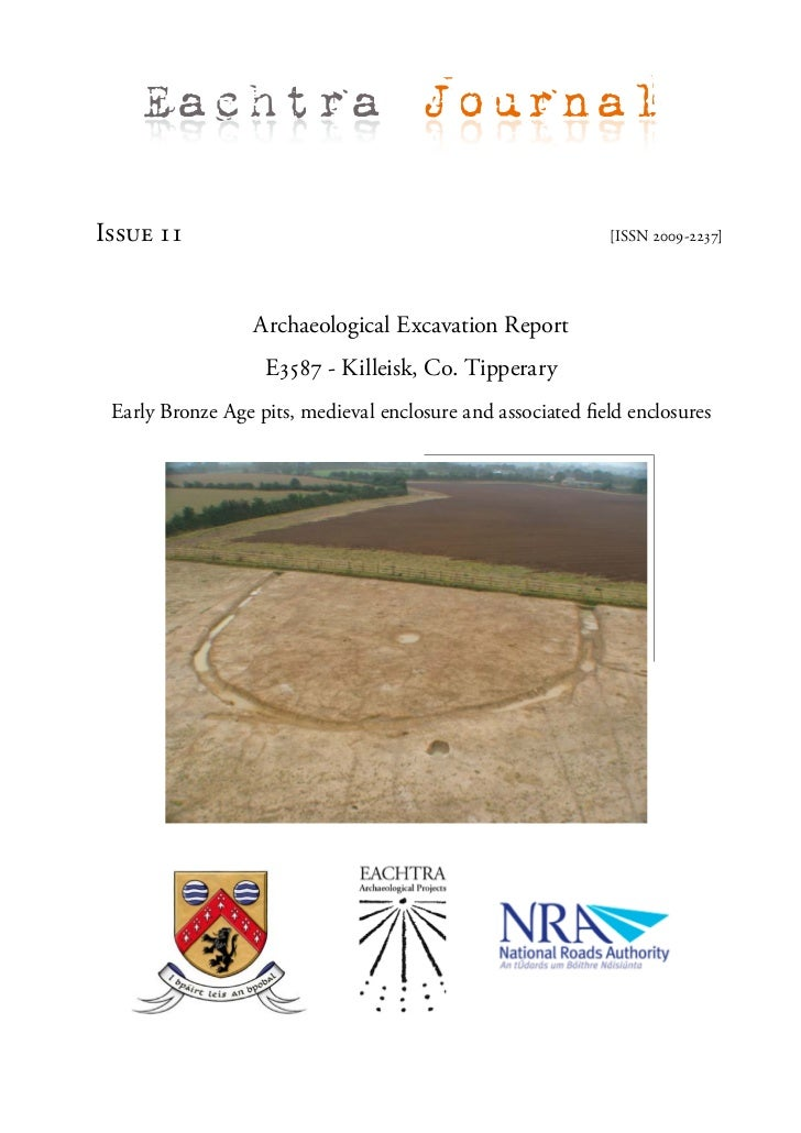 Archaeological Report - Killeisk, Co. Tipperary (Ireland)