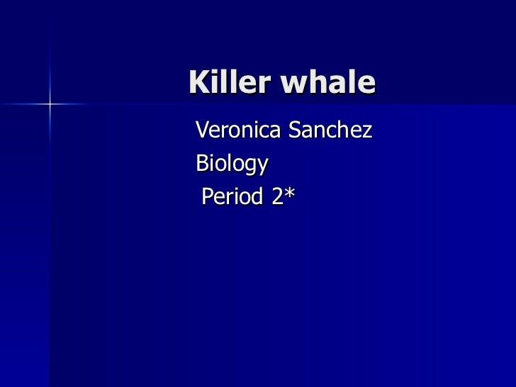 Killer whale Veronica Sanchez   Biology Period 2*
