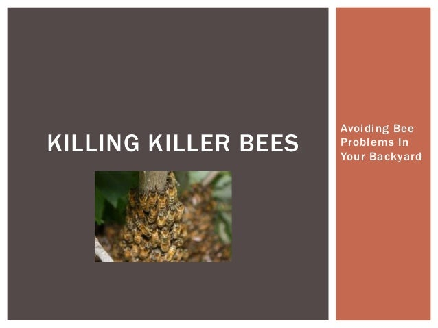 Killing Killer Bees - Avoiding Bee Problems In Your Backyard