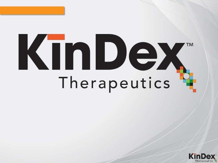 Kindex Final2010v3