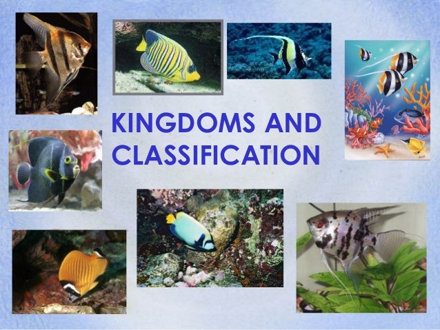 KINGDOMS ANDCLASSIFICATION