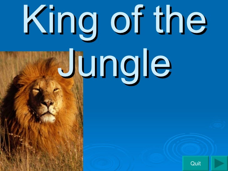King of the Jungle Quit