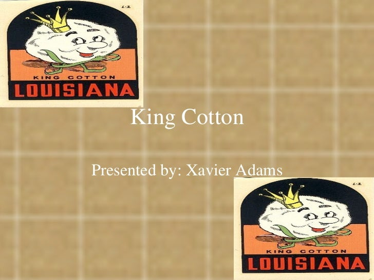 King Cotton Presented by: Xavier Adams