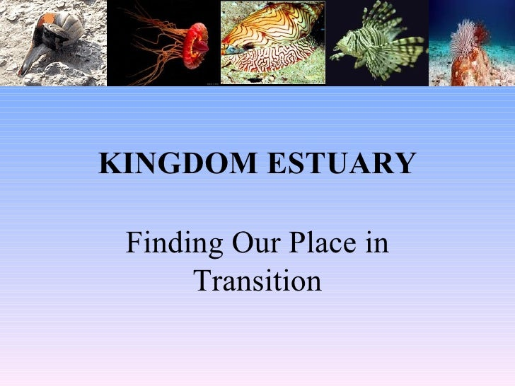 KINGDOM ESTUARY Finding Our Place in Transition