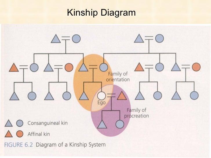 Kinship And Family