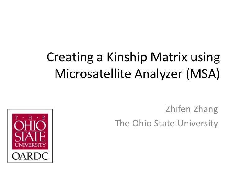 Creating a Kinship Matrix Using MSA