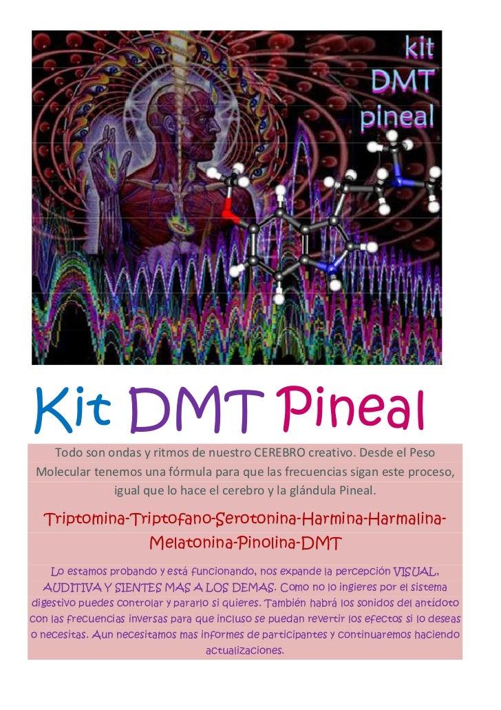 Kit DMT Pineal   Todo son ondas y ritmos de nuestro CEREBRO creativo. Desde el Peso Molecular tenemos una fórmula para que...