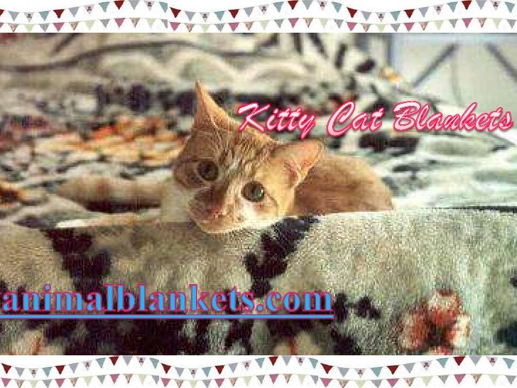 Kitty cat blankets