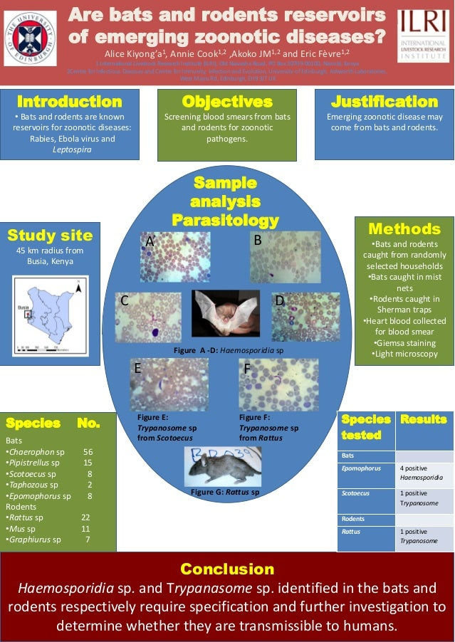 Are bats and rodents reservoirsof emerging zoonotic diseases?Alice Kiyong'a1, Annie Cook1,2 ,Akoko JM1,2 and Eric Fèvre1,2...