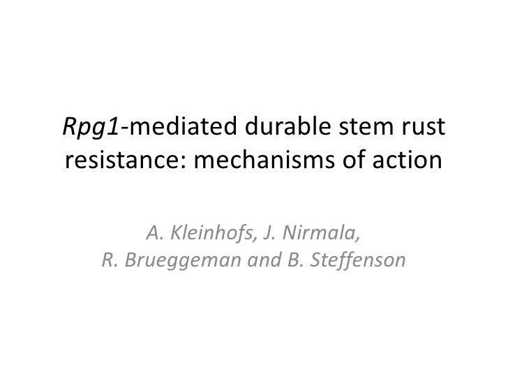 Rpg1-mediated durable stem rustresistance: mechanisms of action        A. Kleinhofs, J. Nirmala,   R. Brueggeman and B. St...
