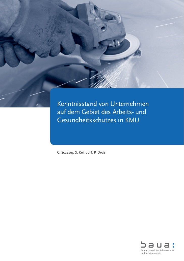 Kenntnisstand von Unternehmenauf dem Gebiet des Arbeits- undGesundheitsschutzes in KMUC. Sczesny, S. Keindorf, P. Droß