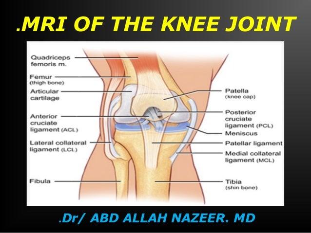 MRI of the .knee joint  DR.ABD-ELLAH NAZER. MD