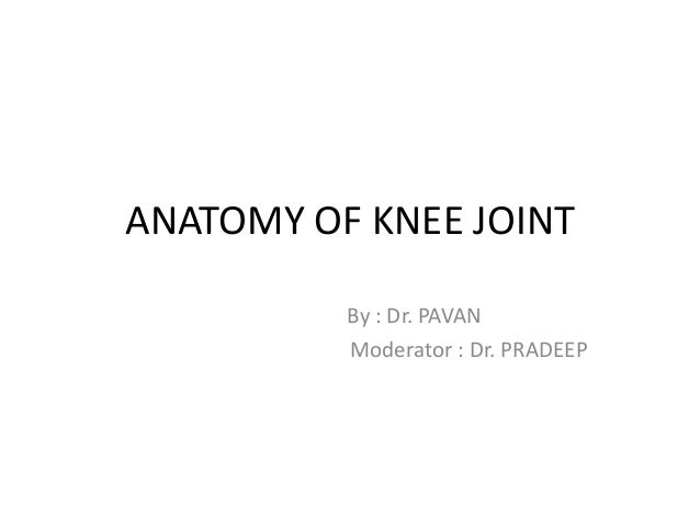 ANATOMY OF KNEE JOINT By : Dr. PAVAN Moderator : Dr. PRADEEP