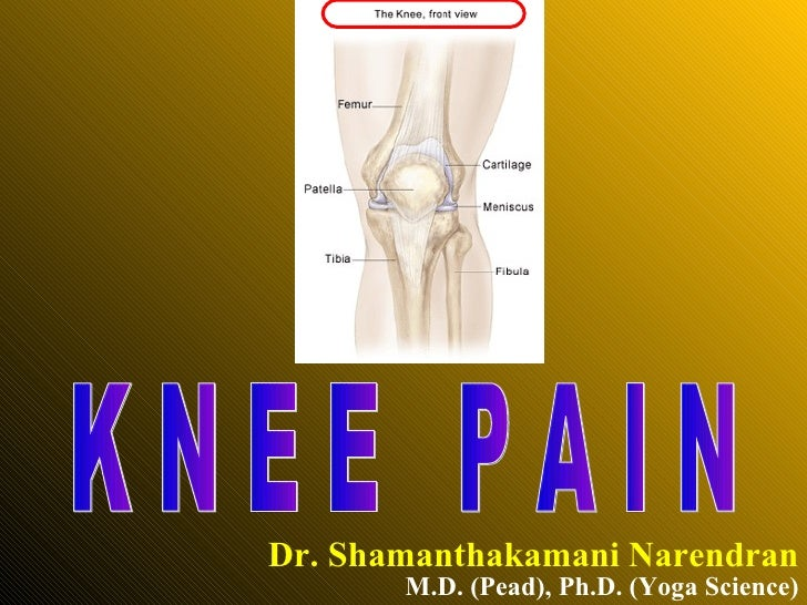 Knee Pain.ppt
