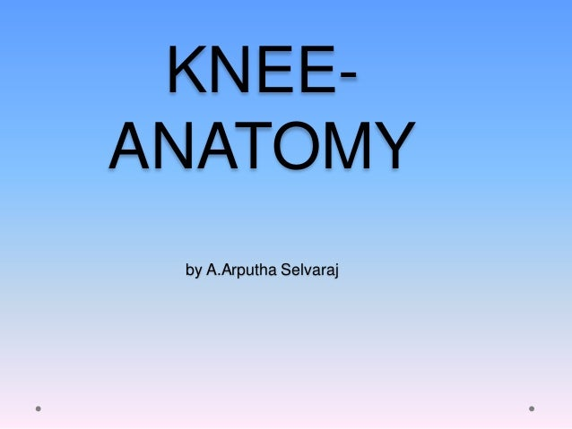 Knee to know