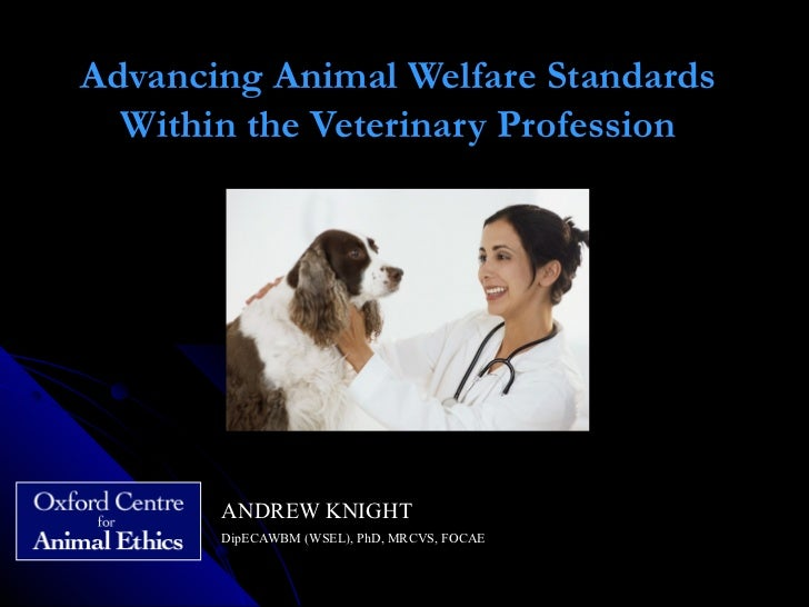 Advancing Animal Welfare Standards within the Veterinary Profession