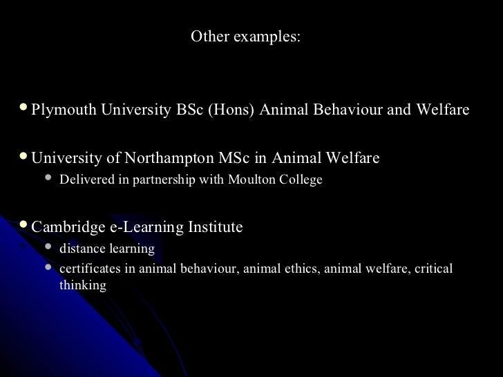Biochemistry of animals dissertation