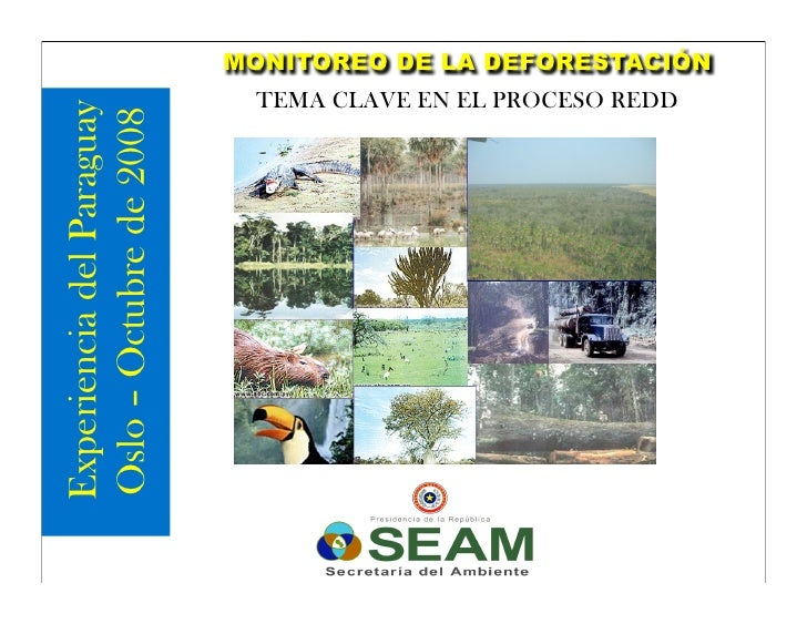National REDD strategy Paraguay