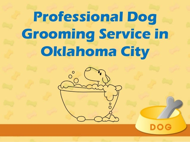 Dog Grooming Ringwood Area