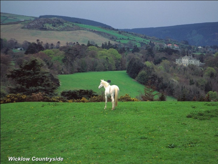 Wicklow Countryside