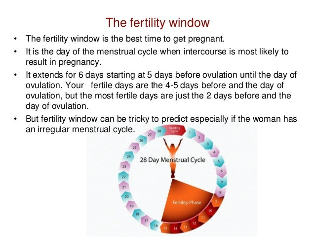 whens the best time to get pregnant