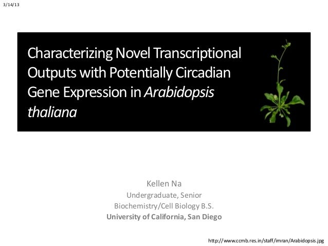 3/14/13          Characterizing Novel Transcriptional          Outputs with Potentially Circadian          Gene Expression...