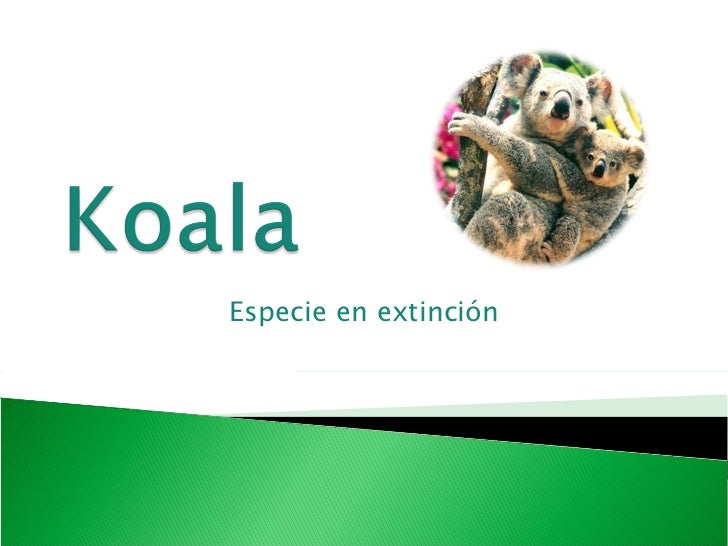 Especie en extinción