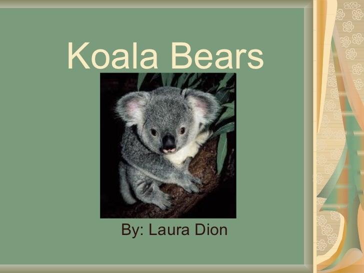 Koala Bears By: Laura Dion