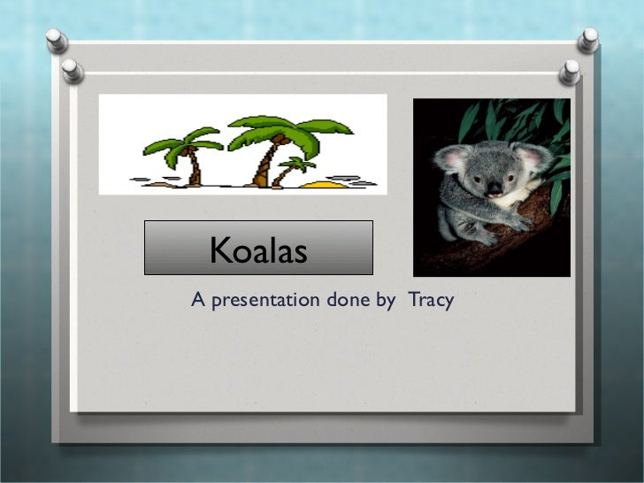 Koalas A presentation done by   Tracy