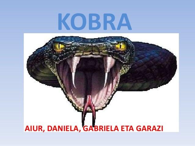 KOBRA AIUR, DANIELA, GABRIELA ETA GARAZI