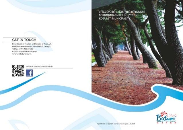 Kobuleti Municipality გადაადგილება ქვეყნის შიგნით საქართველოს რეგიონებში გადაადგილებისთვის შესაძლებელია შემდეგი საზოგადოებ...