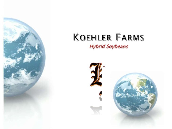 KOEHLER FARMS   Hybrid Soybeans