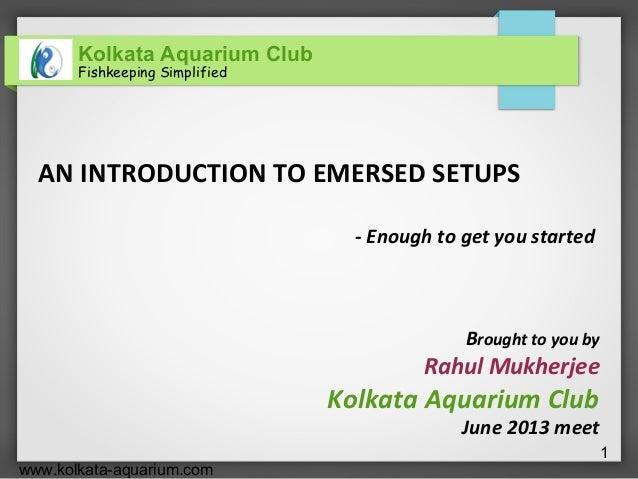 Kolkata Aquarium ClubFishkeeping Simplifiedwww.kolkata-aquarium.com1AN INTRODUCTION TO EMERSED SETUPS- Enough to get you s...