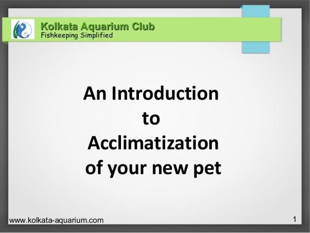 Kolkata Aquarium ClubKolkata Aquarium ClubFishkeeping Simplifiedwww.kolkata-aquarium.com 1An IntroductiontoAcclimatization...