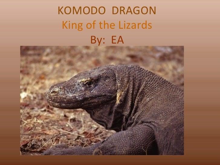 KOMODO  DRAGON King of the Lizards By:  EA