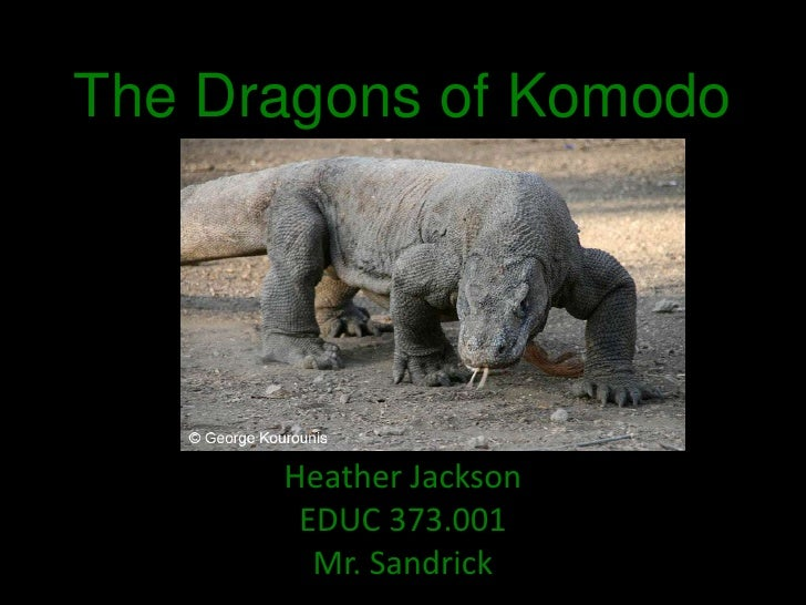The Dragons of Komodo<br />Heather Jackson<br />EDUC 373.001<br />Mr. Sandrick<br />
