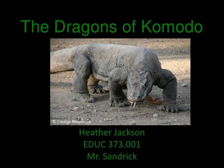 Komodo Dragon Inquiry