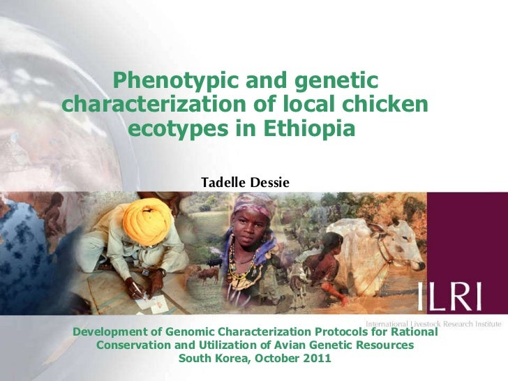 Phenotypic and genetic characterization of local chicken ecotypes in Ethiopia   Tadelle Dessie Development of Genomic Char...