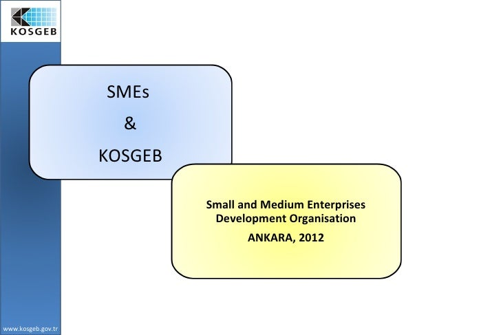 SMEs                      &                    KOSGEB                             Small and Medium Enterprises            ...