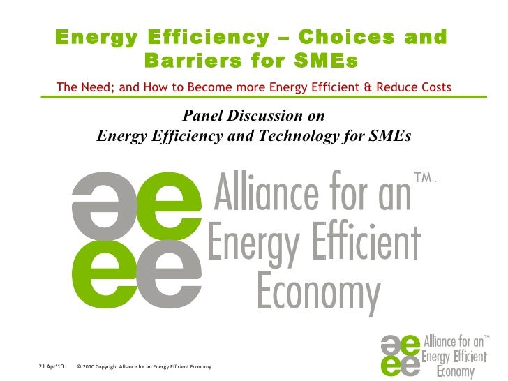 Energy Efficiency – Choices and Barriers for SMEs Panel Discussion on  Energy Efficiency and Technology for SMEs  The Need...