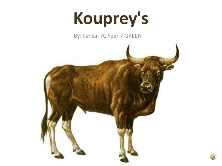 KoupreysBy: Fahsai 7C Year 7 GREEN
