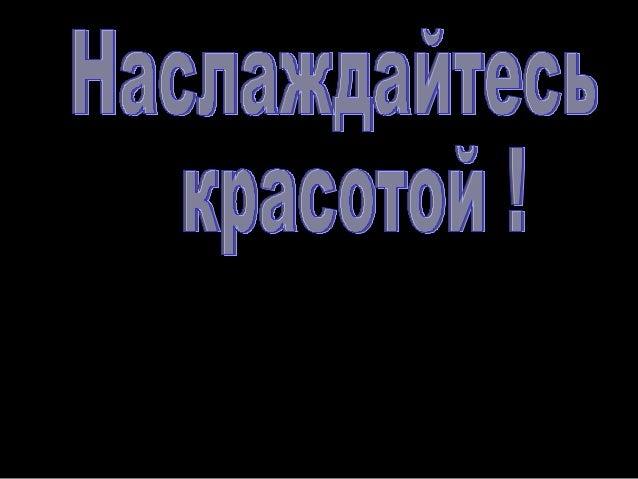 Больше презентаций на       сайте: www.ppsword.narod.ru