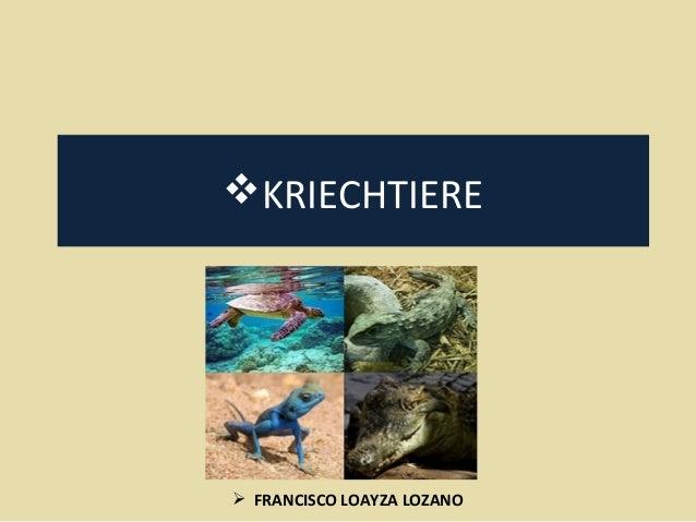 KRIECHTIERE   FRANCISCO LOAYZA LOZANO