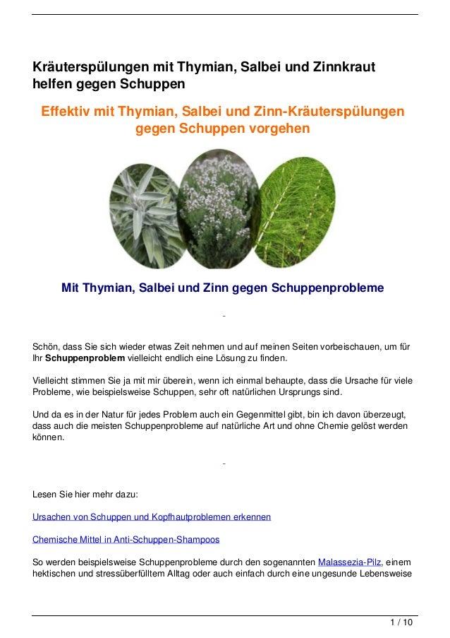 Kräuterspülungen mit Thymian, Salbei und Zinnkrauthelfen gegen Schuppen  Effektiv mit Thymian, Salbei und Zinn-Kräuterspül...